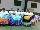 Festival de Guanacastequidad 2014